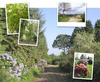 jardin-site-exceptionnel